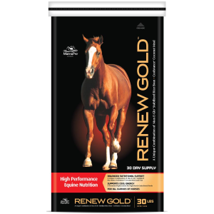Renew Gold Horse Supplement